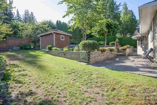 Photo 7: 4646 215B STREET in Langley: Murrayville Home for sale ()  : MLS®# R2086032