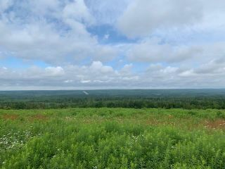 Photo 7: 587 Claremont Road in Claremont: 102S-South Of Hwy 104, Parrsboro and area Residential for sale (Northern Region)  : MLS®# 202116968