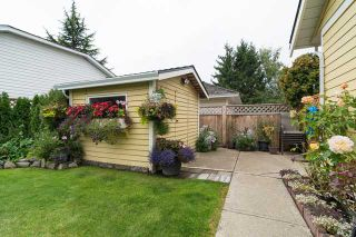 Photo 17: 12630 24A AV in Surrey: Crescent Bch Ocean Pk. House for sale (South Surrey White Rock)  : MLS®# F1423010
