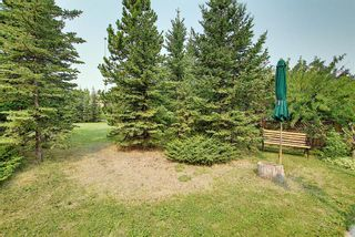 Photo 39: 99 Edgeland Rise NW in Calgary: Edgemont Detached for sale : MLS®# A1132254