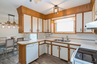 Photo 9: 131 Hillview Avenue in East St Paul: Birds Hill Town Residential for sale (3P)  : MLS®# 202110748
