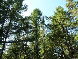 Photo 2: Lot B Mt. Matheson Rd in : Sk East Sooke Land for sale (Sooke)  : MLS®# 866391
