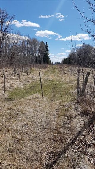 Photo 15: Range Road 55 in Rural Rocky View County: Rural Rocky View MD Land for sale : MLS®# C4295902