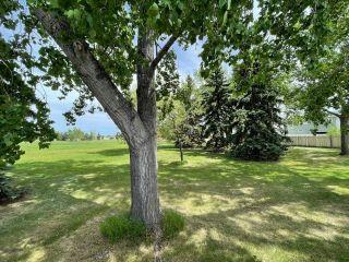Photo 4: 14115 120A Street in Edmonton: Zone 27 House for sale : MLS®# E4247326