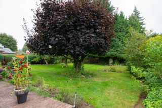 Photo 35: 452 Dogwood Rd in : PQ Qualicum Beach House for sale (Parksville/Qualicum)  : MLS®# 856145