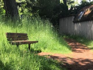 Photo 8: 1119 Totem Lane in Saanich: SE Cordova Bay House for sale (Saanich East)  : MLS®# 858786