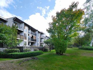 """Main Photo: 105 9952 149 Street in Surrey: Guildford Condo for sale in """"Tall Timbers"""" (North Surrey)  : MLS®# R2107429"""