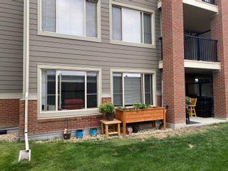 Photo 18: 105 3715 WHITELAW Lane in Edmonton: Zone 56 Condo for sale : MLS®# E4262168