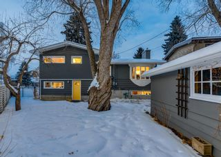 Photo 41: 132 CHINOOK Drive SW in Calgary: Chinook Park Detached for sale : MLS®# A1071205
