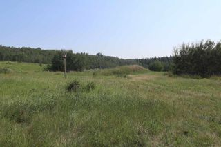 Photo 41: 23509 Twp 484: Rural Leduc County House for sale : MLS®# E4258040