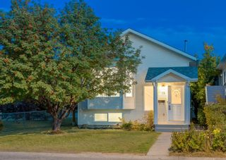 Main Photo: 19 Erin Circle SE in Calgary: Erin Woods Detached for sale : MLS®# A1147490