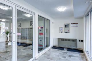 Photo 2: 204 5816 MULLEN Place in Edmonton: Zone 14 Condo for sale : MLS®# E4262303
