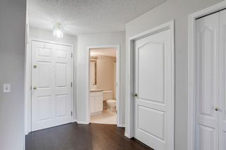 Photo 14: 318 10 Sierra Morena Mews SW in Calgary: Signal Hill Apartment for sale : MLS®# A1082577