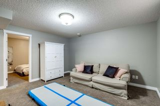 Photo 31: 16 CODETTE Way: Sherwood Park House for sale : MLS®# E4237097