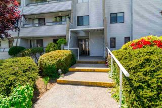 """Photo 2: 304 1341 GEORGE Street: White Rock Condo for sale in """"Oceanview Apartments"""" (South Surrey White Rock)  : MLS®# R2173769"""