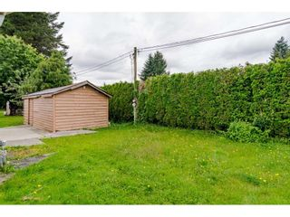 """Photo 24: 3 4426 232 Street in Langley: Salmon River Manufactured Home for sale in """"WESTFIELD COURT"""" : MLS®# R2479123"""