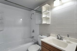 Photo 13: 307 903 19 Avenue SW in Calgary: Lower Mount Royal Apartment for sale : MLS®# A1152500