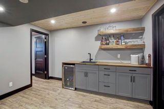 Photo 22: 161 DOUGLASBANK Way SE in Calgary: Douglasdale/Glen Detached for sale : MLS®# A1011698