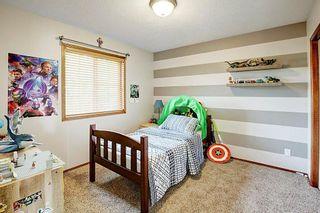 Photo 22: 292 ELGIN Way SE in Calgary: McKenzie Towne Detached for sale : MLS®# C4280970