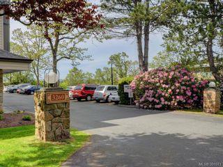 Photo 20: 203 3260 Quadra St in VICTORIA: SE Quadra Condo for sale (Saanich East)  : MLS®# 786020