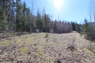 Photo 9: Lot 11 Ivy Road: Eagle Bay Vacant Land for sale (South Shuswap)  : MLS®# 10229941