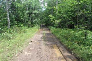 Photo 24: Lt 12 N Doyle Road in Kawartha Lakes: Rural Bexley House (1 1/2 Storey) for sale : MLS®# X5357700
