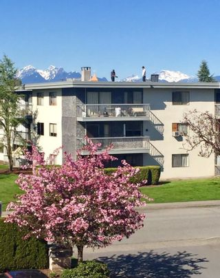 Photo 20: 213 20600 53A Avenue in Langley: Langley City Condo for sale : MLS®# R2593027