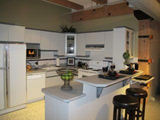 Photo 10: 167 Bannatyne Avenue in WINNIPEG: Central Winnipeg Condominium for sale : MLS®# 1118067
