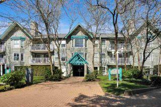 """Photo 1: 203 15110 108 Avenue in Surrey: Guildford Condo for sale in """"River Pointe"""" (North Surrey)  : MLS®# R2562535"""