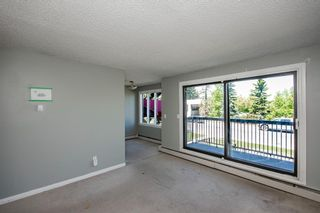 Photo 10: 201 611 67 Avenue SW in Calgary: Kingsland Apartment for sale : MLS®# A1124707