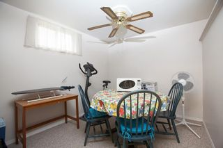 Photo 18: 8735 92B Avenue in Edmonton: Zone 18 House for sale : MLS®# E4249129