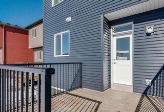 Photo 28: 286 Cornerstone Crescent NE in Calgary: Cornerstone Detached for sale : MLS®# A1075287