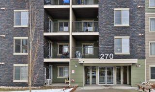 Photo 14: 209 270 MCCONACHIE Drive in Edmonton: Zone 03 Condo for sale : MLS®# E4225834