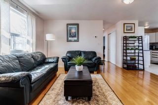 Photo 8: 424 Pineland Avenue in Oakville: Bronte East House (Bungalow) for sale : MLS®# W5213169