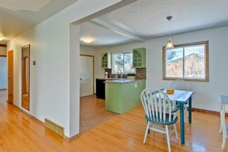 Photo 9: 105 Langton Drive SW in Calgary: North Glenmore Park Detached for sale : MLS®# A1066568