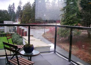 """Photo 15: 301 15 E ROYAL Avenue in New Westminster: Fraserview NW Condo for sale in """"VICTORIA HILL HIGHRISE RESIDENCES"""" : MLS®# V872446"""