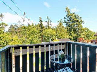 Photo 21: 522 Ker Ave in : SW Gorge House for sale (Saanich West)  : MLS®# 877020