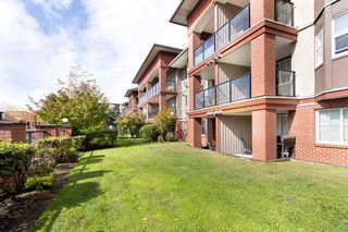 """Photo 1: 211 19774 56 Avenue in Langley: Langley City Condo for sale in """"MADISON STATION"""" : MLS®# R2537898"""