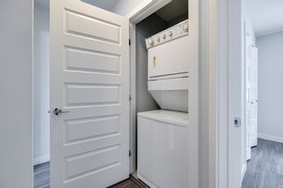 Photo 39: 11235 52 Street in Edmonton: Zone 09 House for sale : MLS®# E4252061