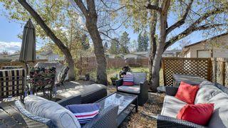 Photo 38: 347 Whiteside Road NE in Calgary: Whitehorn Detached for sale : MLS®# A1153718