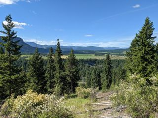 Photo 43: 455 Albers Road, in Lumby: House for sale : MLS®# 10235226