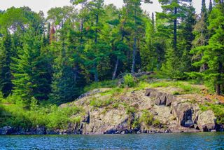 Photo 6: Lot 8 Five Point Island in South of Kenora: Vacant Land for sale : MLS®# TB212085