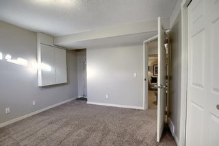 Photo 42: 227 Prestwick Manor SE in Calgary: McKenzie Towne Detached for sale : MLS®# A1059017