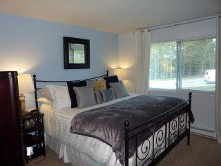 "Photo 11: 13 11588 232 Street in Maple Ridge: Cottonwood MR Townhouse for sale in ""COTTONWOOD VILLAGE"" : MLS®# R2260675"