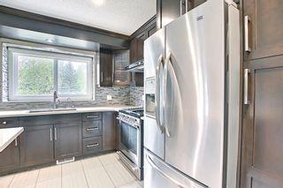 Photo 13: 23 Castlefall Way NE in Calgary: Castleridge Detached for sale : MLS®# A1141276