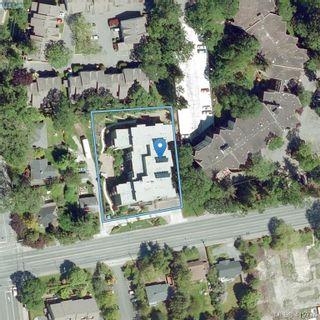 Photo 27: 205 982 McKenzie Ave in VICTORIA: SE Quadra Condo for sale (Saanich East)  : MLS®# 830856
