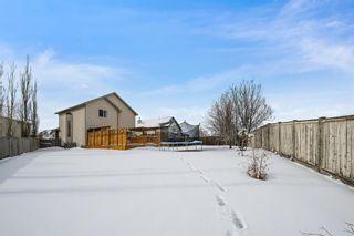 Photo 35: 82 Citadel Mesa Close NW in Calgary: Citadel Detached for sale : MLS®# A1073276