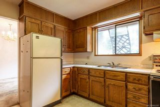 Photo 12: 3157 York Rd in : CR Campbell River South House for sale (Campbell River)  : MLS®# 866205