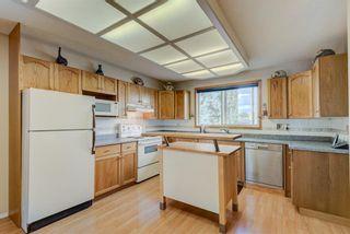Photo 9: 114 Pinetree Bay NE in Calgary: Pineridge Detached for sale : MLS®# A1151101
