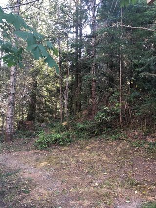 Photo 12: 292 Long Harbour Rd in : GI Salt Spring House for sale (Gulf Islands)  : MLS®# 884293